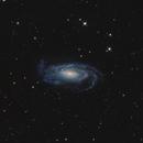 NGC 5033,                                Roberto Marinoni