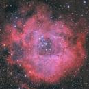 Rosette Nebula,                                Simas Šatkauskas