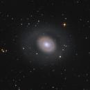 M94 - Croc's Eye,                                Robert Eder