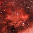 Pelican Nebula,                                Jason Kaufman