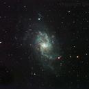 M33,                                Steve Ibbotson
