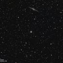 NGC 891 & Friends,                                RyanP