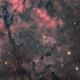 NGC 6910 HaRVB,                                Le Mouellic Guill...