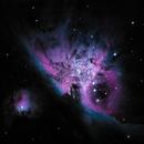 M42 M43 Trapezium Open cluster,                                Wes Smith