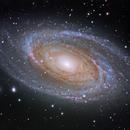 M81, Bode's Nebula,                                Shannon Calvert