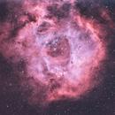 Rosette Nebula HOO,                                @acrux_astrofotografia
