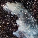 IC 2118 - Witch Head Nebula,                                Alessandro Cavallaro