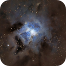 Iris Nebula (NGC 7023),                                Ara