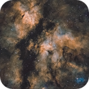 Butterfly Nebula - Nebulosa Colibri - Zona Sadr,                                Bror Federico Ced...