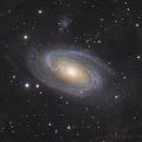 M81,                                seasonzhang813