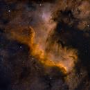 NGC 7000 - North American Nebula HHO,                                Starlancer