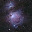 Orion Nebula,                    JoAnn