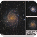 IC342 Giant 'hidden' galaxy.,                                Olly Penrice
