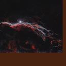 Western Veil Nebula in HaOIII-RGB with DSLR,                                Michael S.