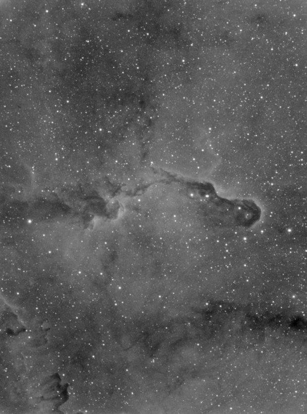 IC1396A elephant's trunk,                                antares47110815