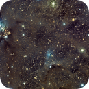 NGC 1333 - Deep Sky West,                                fmcmullan