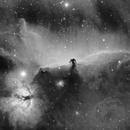 Horsehead Nebula and Flame Nebula in H-Alpha,                                Will Czaja