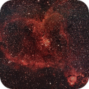 Heart Nebula,                                Michael Leung