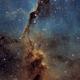 Elephant's Trunk nebula  - Hubble Palette,                    Thomas Richter