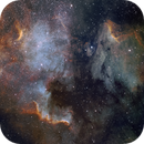 The North American Nebula,                                Tristan Campbell