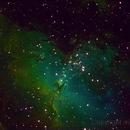 M16 Eagle Nebula,                                Manuel
