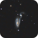 Arp 84 (NGC 5395 + NGC 5394) wider field,                                Benny Colyn