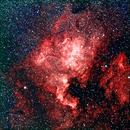 North America Nebula,                                Manel Marin Guzman