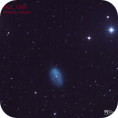 NGC 1360  Planetary Nebula,                                Jeff Padell