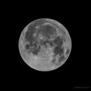 The Full Moon - 1/2 Orbit Past the Eclipse,                                Damien Cannane