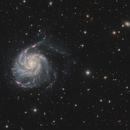 M101 The Pinwheel Galaxy,                    Barry Wilson