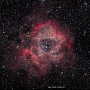 """Der """"Rosenherz Nebel"""" - Rosette Nebel (NGC2238),                                firstLight"""