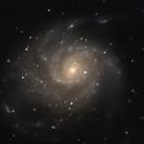 M 101 Pinwheel Galaxy,                    Michael T.