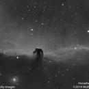 Horsehead Nebula #2,                                Molly Wakeling