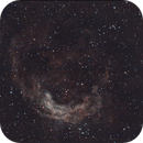 NGC3199 The Banana Nebula,                                David Wright
