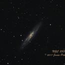 NGC 253,                                Jesús Piñeiro V.