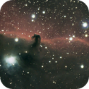 IC434 Horsehead,                                Gary Sizer