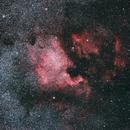 North American Nebula (NGC 7000) and the Pelican Nebula,                                CGPhotography