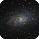 Galaxie du Triangle - M33 (reboot),                                martial_julian