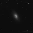 M 64  Black Eye Galaxy,                                Tullio Di Primio