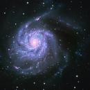 The Pinwheel Galaxy M101,                                Andy Elliott