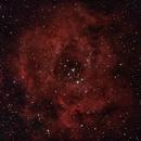 Rosette nebula,                                Ivana