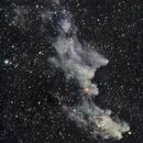 Witchhead Nebula,                                Ron Kramer