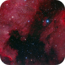 The North American Nebula (October 2013 Version),                                mikebrous