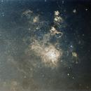 NGC2070-The tarantula,                                Guillermo (Guy) Yanez