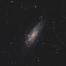 "Galaxy Season 2020 - ""Koi Fish Galaxy"", NGC 4559 in Coma Berenices,                                Michael S."