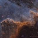 Cygnus Wall SHO,                                Michael Leung