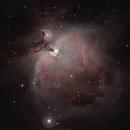 The Orion Nebula, M42,                                Steven Bellavia