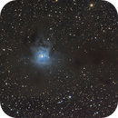 NGC7023,                                THIBAUD Lucas