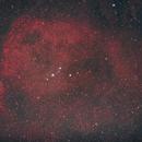 Angelfish Nebula,                                gibran85