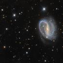 NGC 7479,                                Lorenzo Siciliano